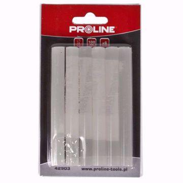 PROLINE 42902